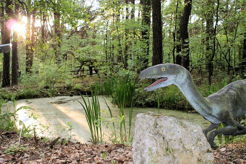 dinozaury-solec